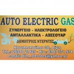 Auto Electric Gas profile picture